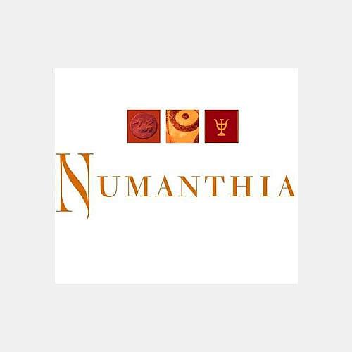 Bodega Numanthia