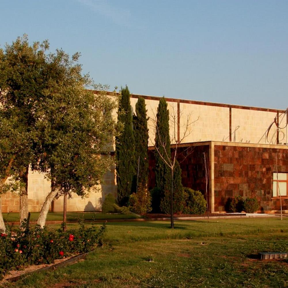 Bodega San Román